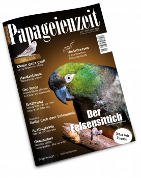 Papageienzeit Nr. 51 (August 2020/ September 2020)