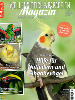WP Magazin 5/2020 (September/Oktober)