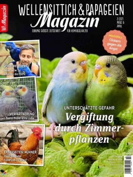 WP Magazin 2/2021 (März/ April)